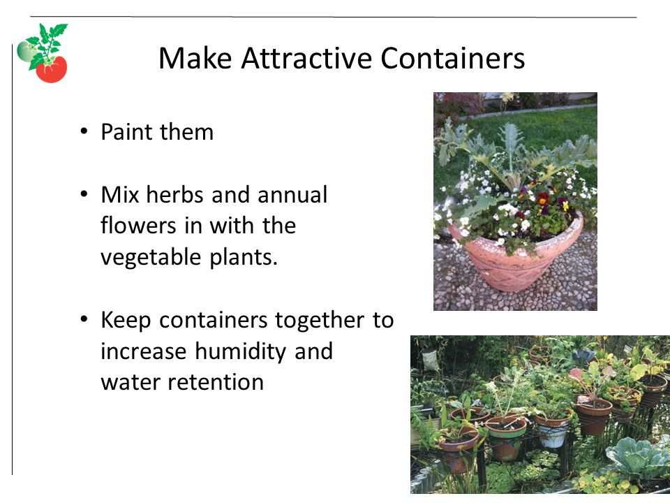 Make Attractive Containers Paint them Mix herbs and annual flowers in with the vegetable plants.