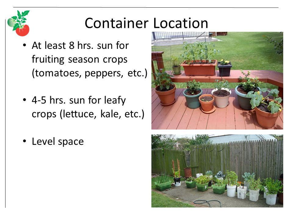 Container Location At least 8 hrs. sun for fruiting season crops (tomatoes, peppers, etc.) 4-5 hrs.