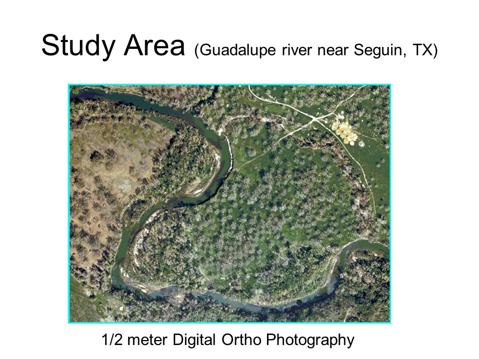 Study Area (Guadalupe river near Seguin, TX) 1/2 meter Digital Ortho Photography