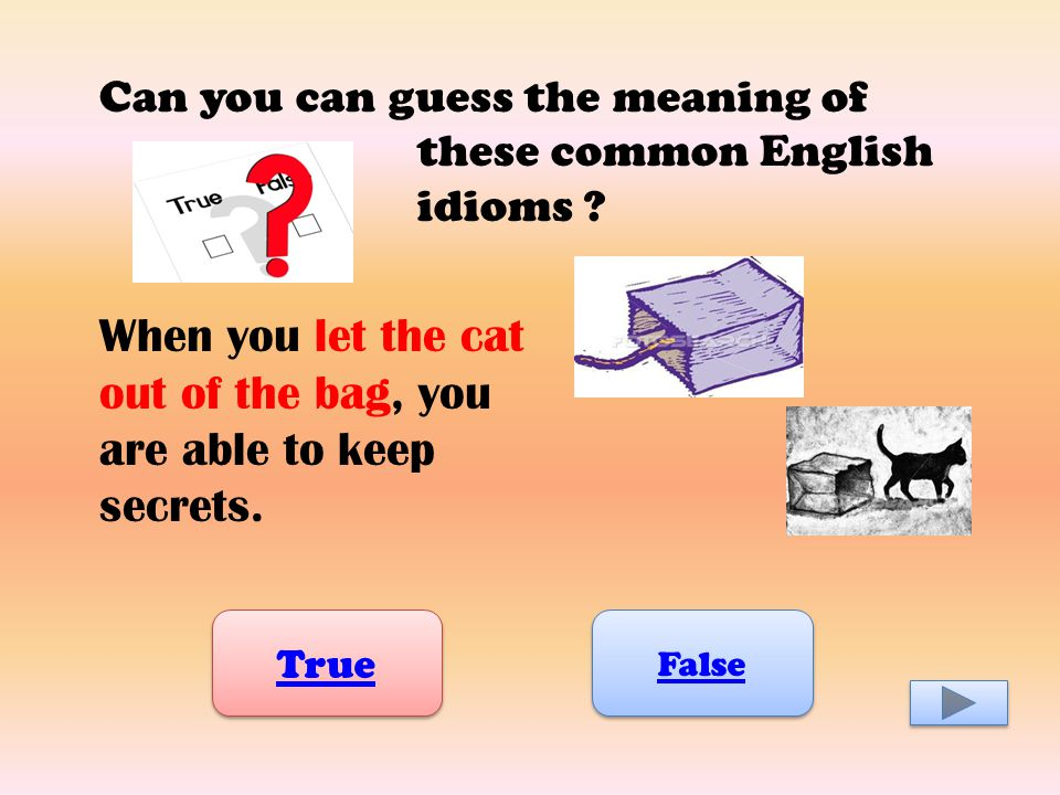 Can you can guess the meaning of these common English idioms .