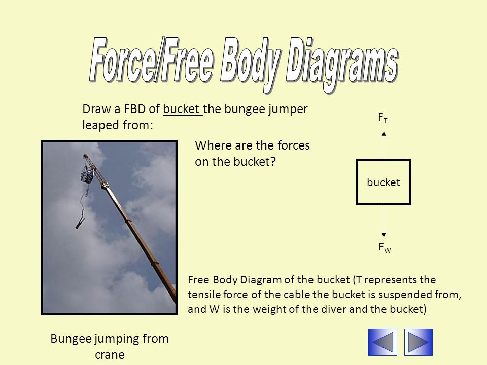 Bungee jumping from crane Draw a FBD of bucket the bungee jumper leaped from: Free Body Diagram of the bucket (T represents the tensile force of the c