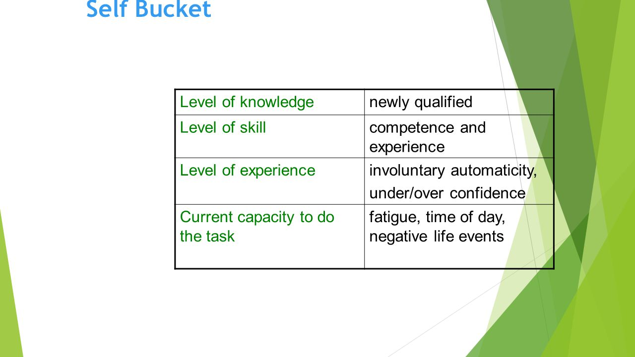 Self Bucket Level of knowledgenewly qualified Level of skillcompetence and experience Level of experienceinvoluntary automaticity, under/over confidence Current capacity to do the task fatigue, time of day, negative life events