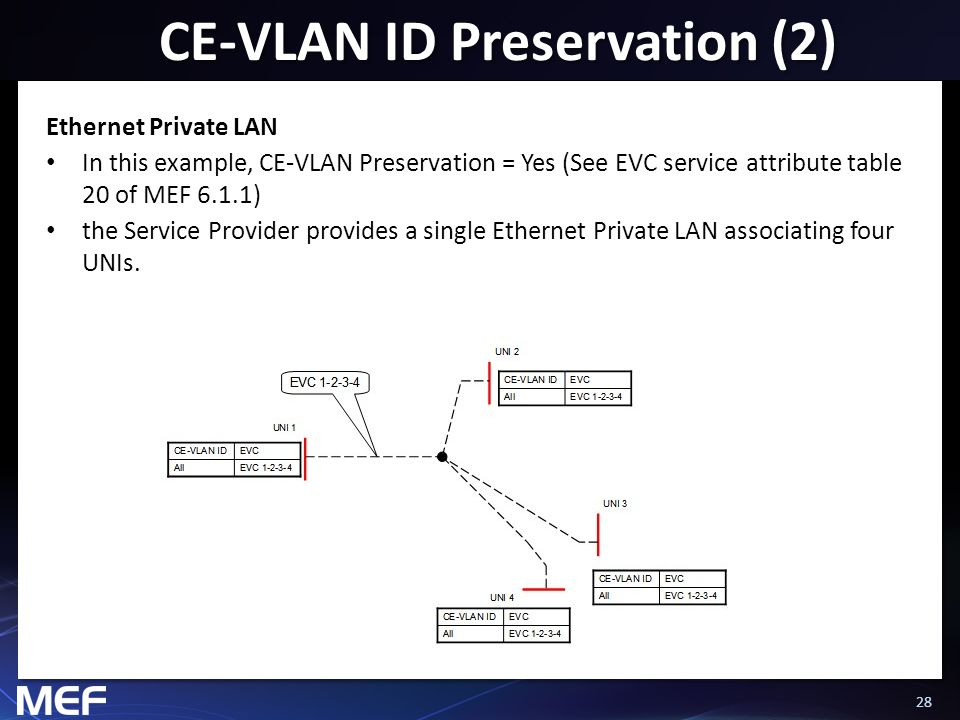 28 CE-VLAN ID Preservation (2) Ethernet Private LAN In this example, CE-VLAN Preservation = Yes (See EVC service attribute table 20 of MEF 6.1.1) the