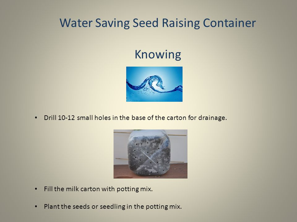 Water Saving Seed Raising Container Knowing Place the milk carton inside the bucket using the skewers to suspend it.