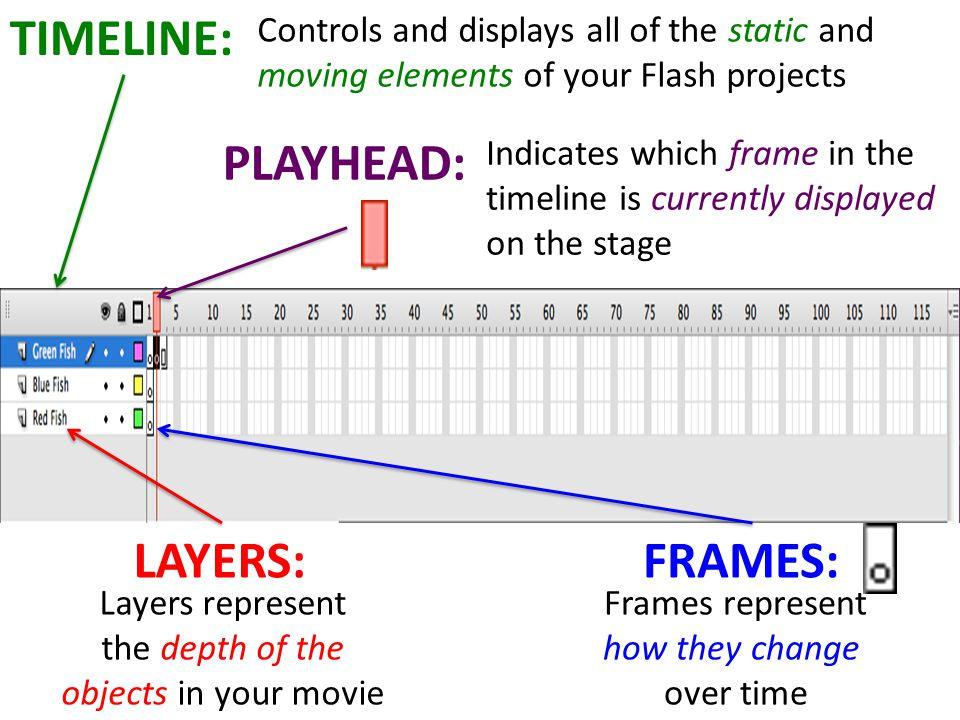 TIMELINE: LAYERS:FRAMES: Layers represent the depth of the objects in your movie Frames represent how they change over time Controls and displays all