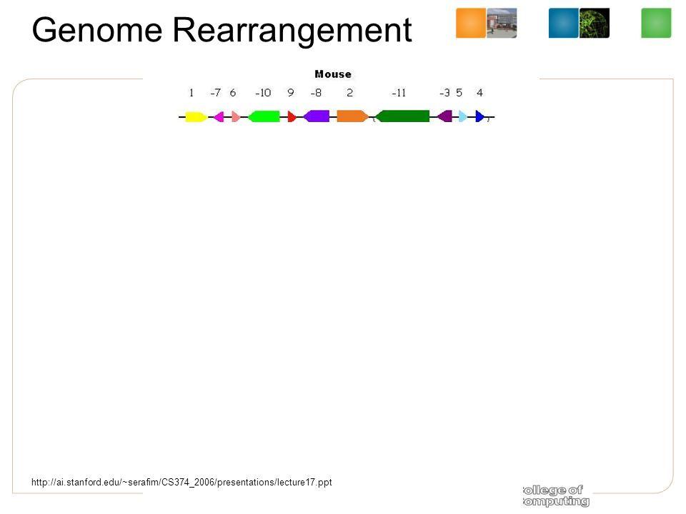 Genome Rearrangement http://ai.stanford.edu/~serafim/CS374_2006/presentations/lecture17.ppt