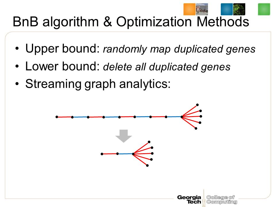 BnB algorithm & Optimization Methods Upper bound: randomly map duplicated genes Lower bound: delete all duplicated genes Streaming graph analytics: