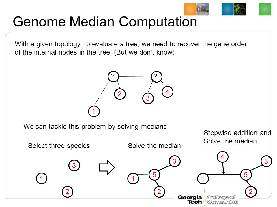 Genome Median Computation 1 2 3 4 With a given topology, to evaluate a tree, we need to recover the gene order of the internal nodes in the tree.