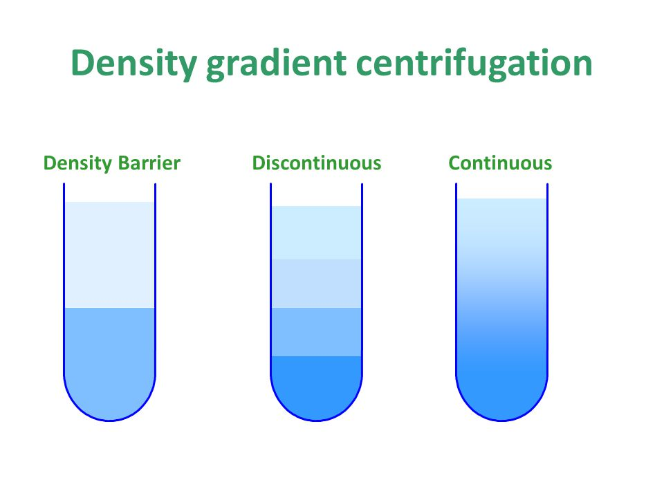 Density BarrierDiscontinuousContinuous Density gradient centrifugation