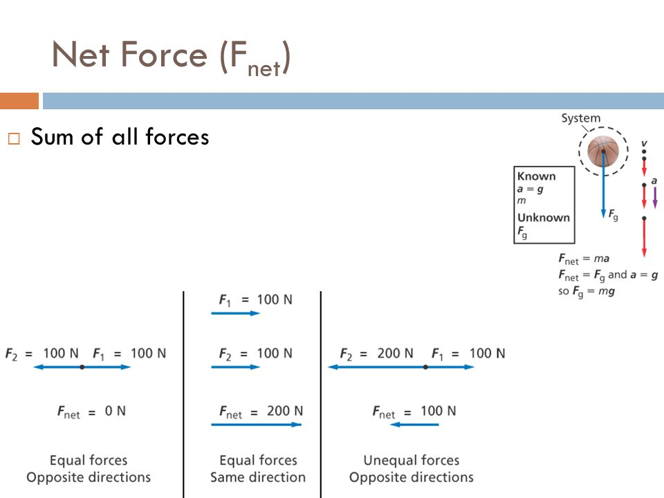 Net Force (F net )  Sum of all forces