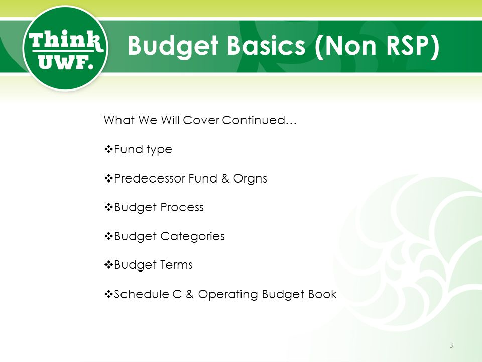 Budget Basics (Non RSP) What We Will Cover Continued…  Fund type  Predecessor Fund & Orgns  Budget Process  Budget Categories  Budget Terms  Schedule C & Operating Budget Book 3