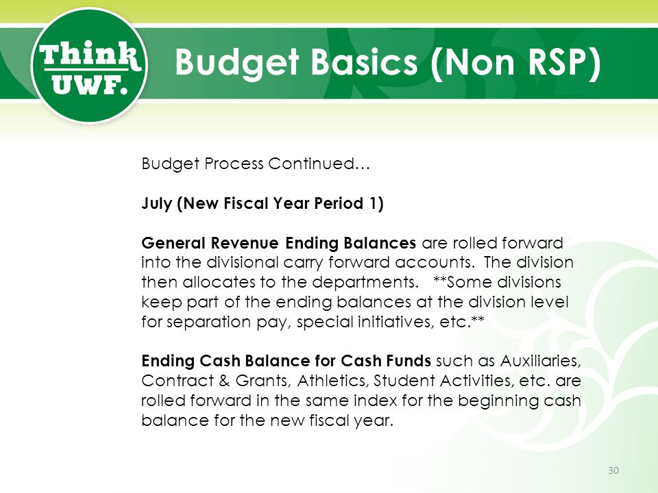 Budget Basics (Non RSP) Budget Process Continued… July (New Fiscal Year Period 1) General Revenue Ending Balances are rolled forward into the division