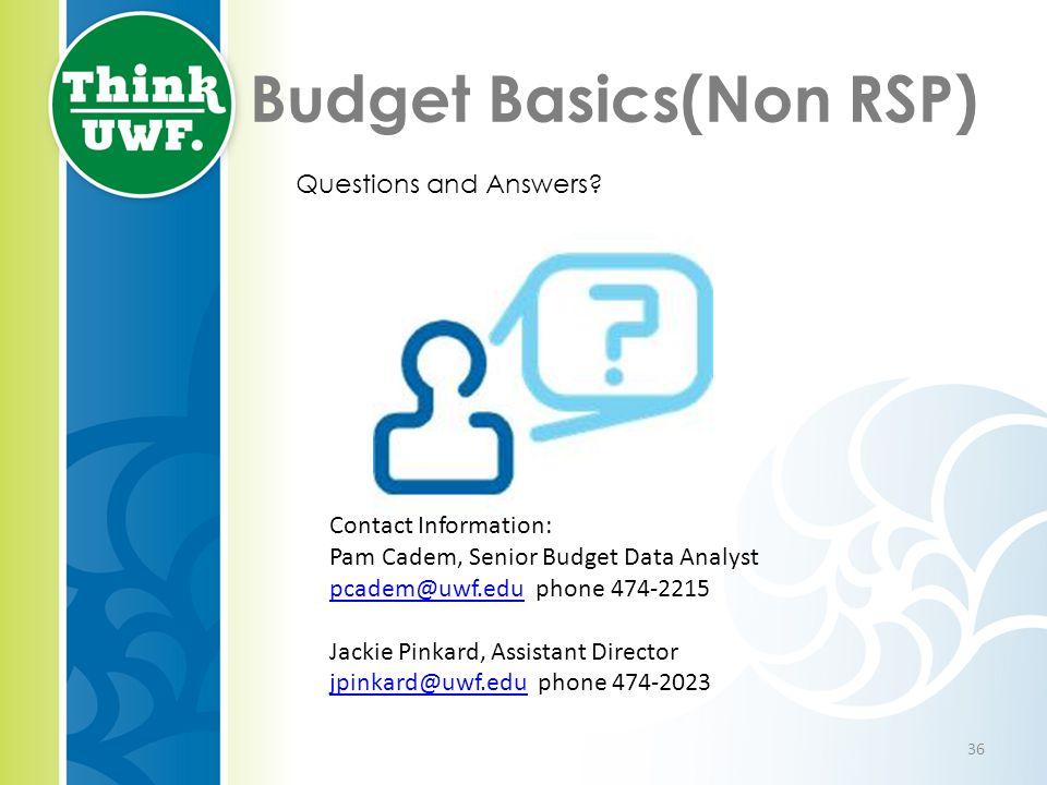 Budget Basics(Non RSP) Questions and Answers? Contact Information: Pam Cadem, Senior Budget Data Analyst pcadem@uwf.edupcadem@uwf.edu phone 474-2215 J