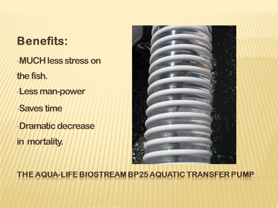 Benefits: MUCH less stress on the fish. Less man-power Saves time Dramatic decrease in mortality.