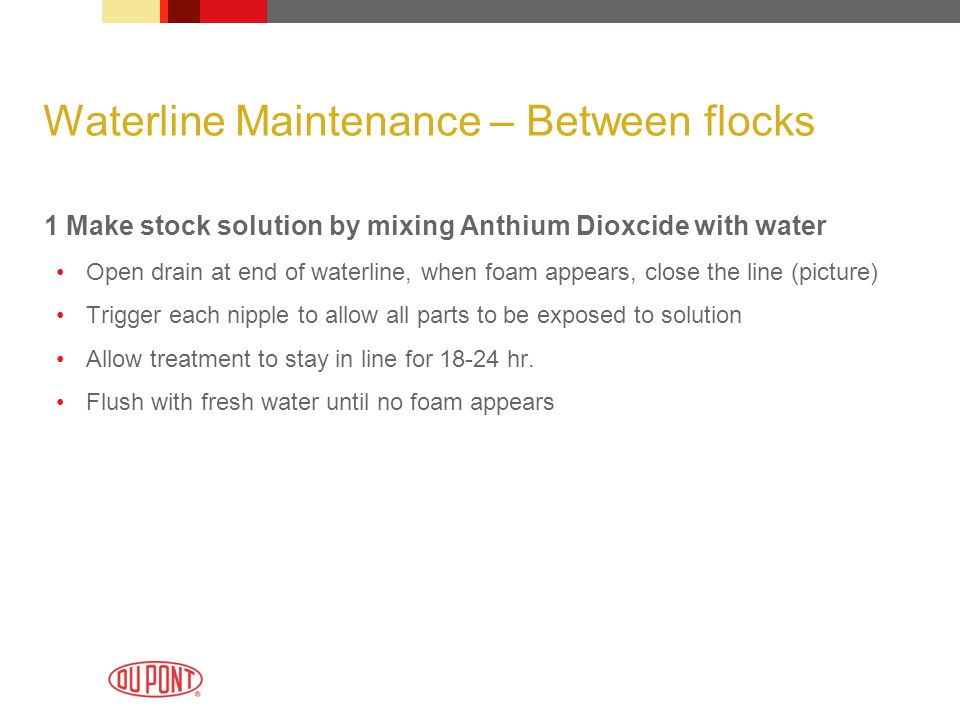 Waterline Maintenance – Between flocks 1 Make stock solution by mixing Anthium Dioxcide with water Open drain at end of waterline, when foam appears,