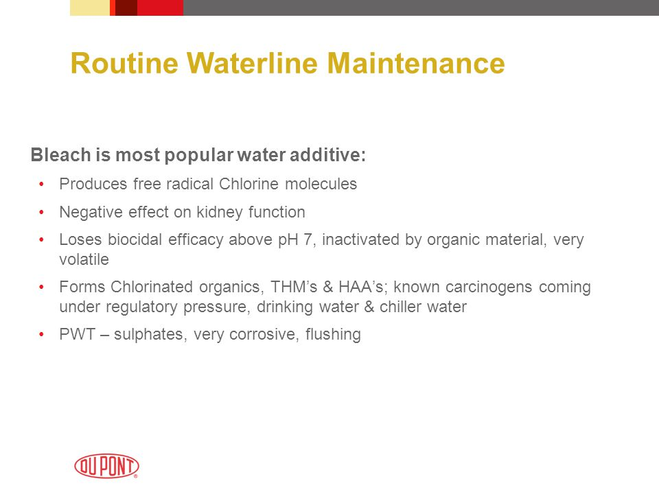 Routine Waterline Maintenance Bleach is most popular water additive: Produces free radical Chlorine molecules Negative effect on kidney function Loses