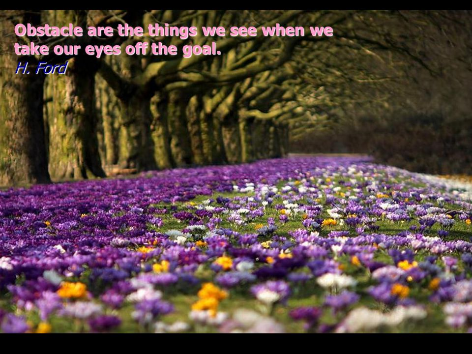 Obstacle are the things we see when we take our eyes off the goal. H. Ford
