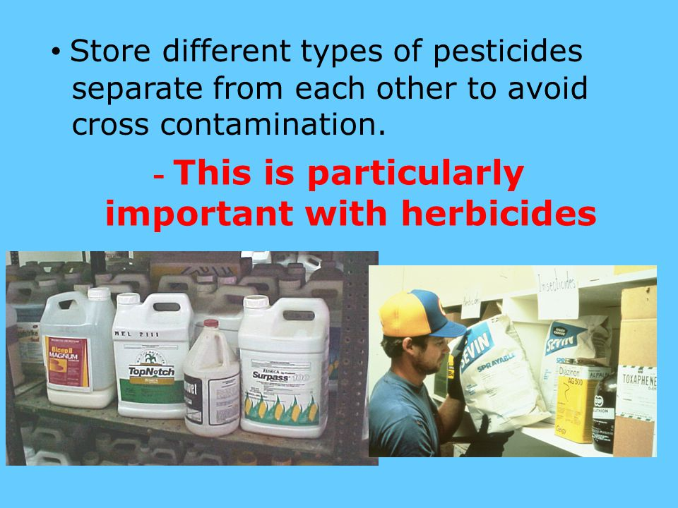 - This is particularly important with herbicides Store different types of pesticides separate from each other to avoid cross contamination.