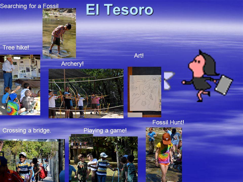 El Tesoro Crossing a bridge.Playing a game. Fossil Hunt.