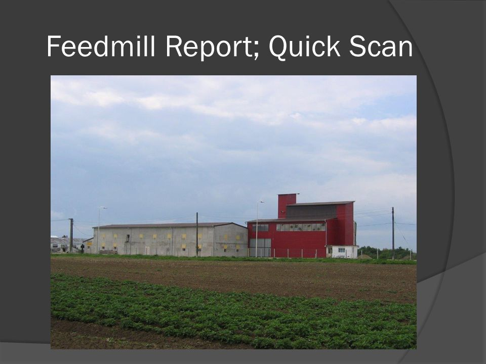 Feedmill Report; Quick Scan