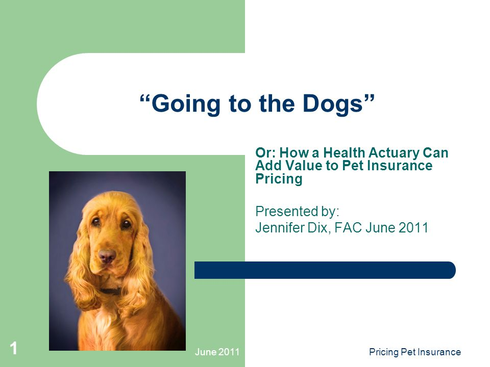 June 2011Pricing Pet Insurance 1 Going to the Dogs Or: How a Health Actuary Can Add Value to Pet Insurance Pricing Presented by: Jennifer Dix, FAC June 2011