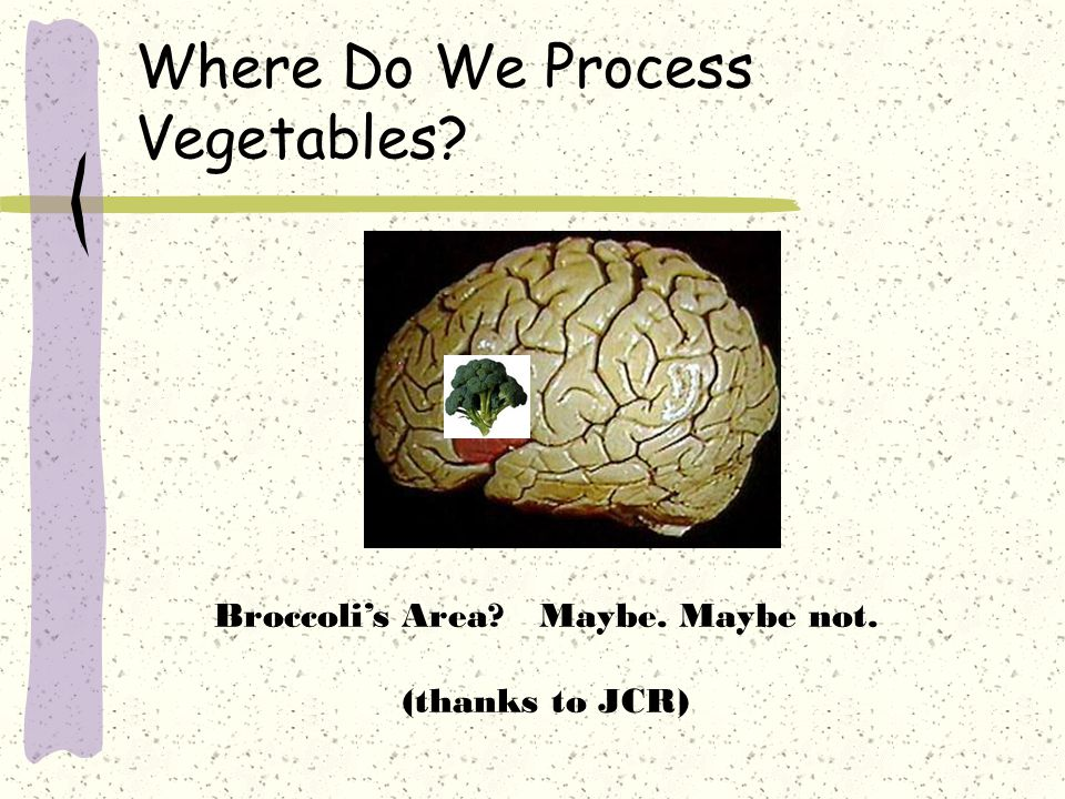 Where Do We Process Vegetables? Broccoli's Area? Maybe. Maybe not. (thanks to JCR)