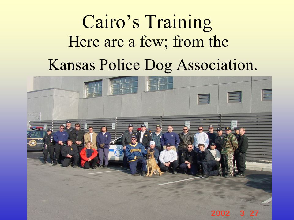 Cairo's Training Here are a few; from the Kansas Police Dog Association.