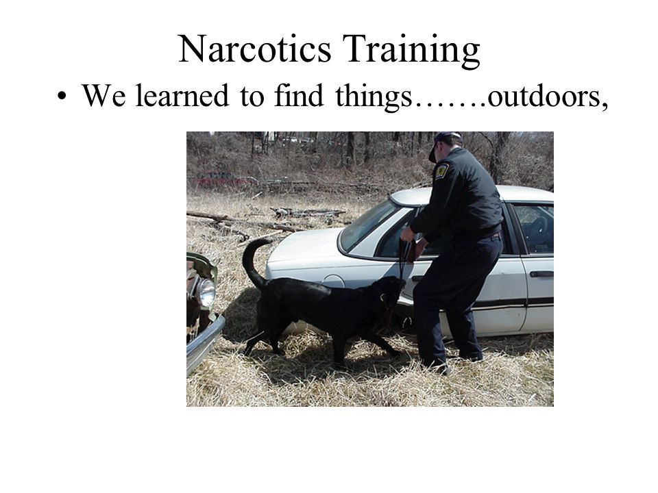 Narcotics Training We learned to find things…….outdoors,