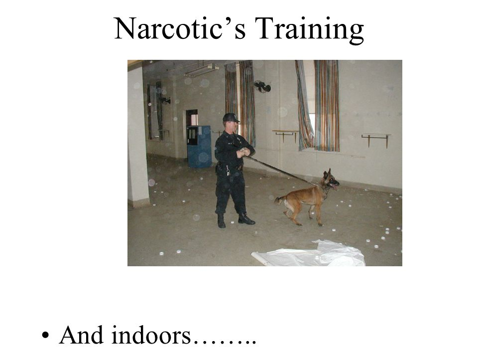 Narcotic's Training And indoors……..