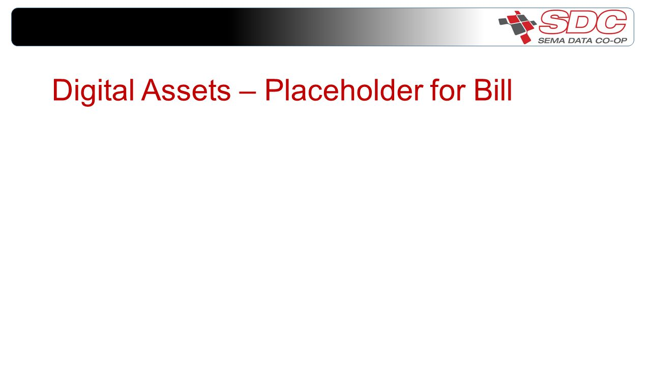 Digital Assets – Placeholder for Bill