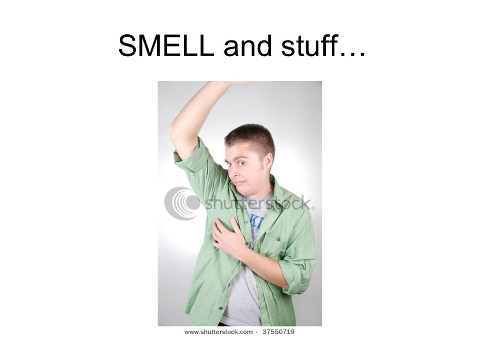 SMELL and stuff…