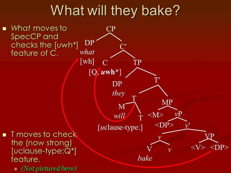 What will they bake. What moves to SpecCP and checks the [uwh*] feature of C.