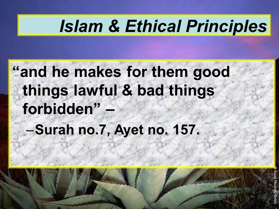 Islam & Ethical Principles and he makes for them good things lawful & bad things forbidden – –Surah no.7, Ayet no.