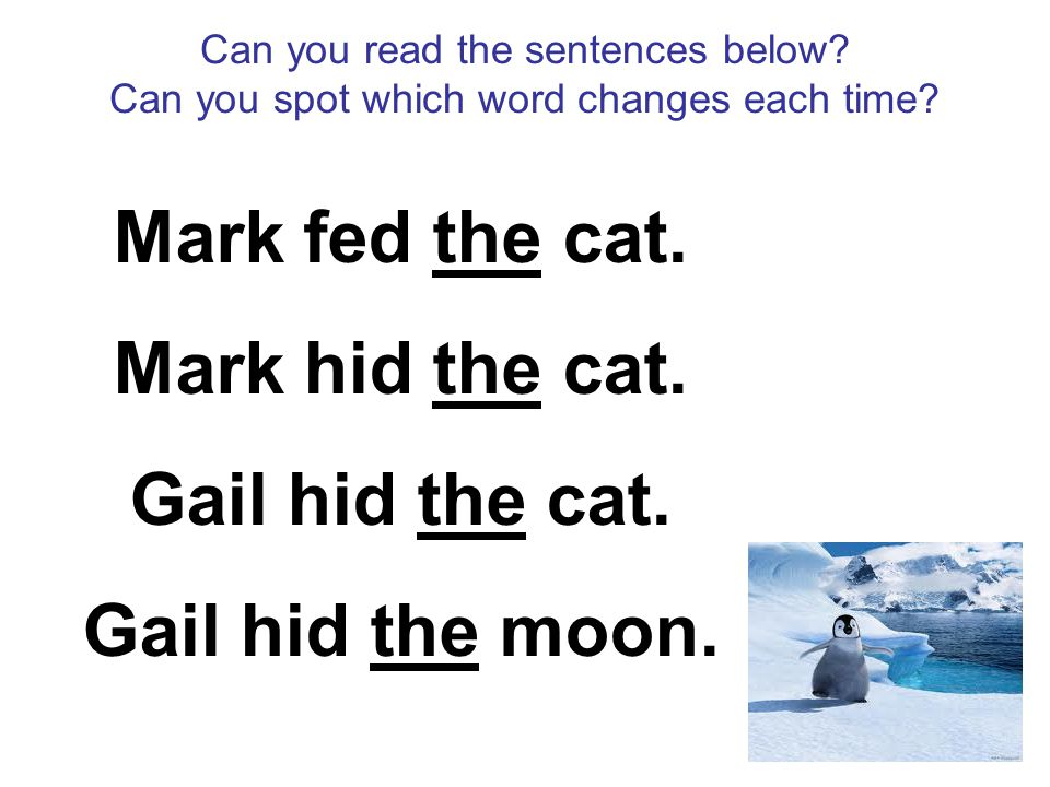 Can you read the sentences below? Can you spot which word changes each time? Mark fed the cat. Mark hid the cat. Gail hid the cat. Gail hid the moon.
