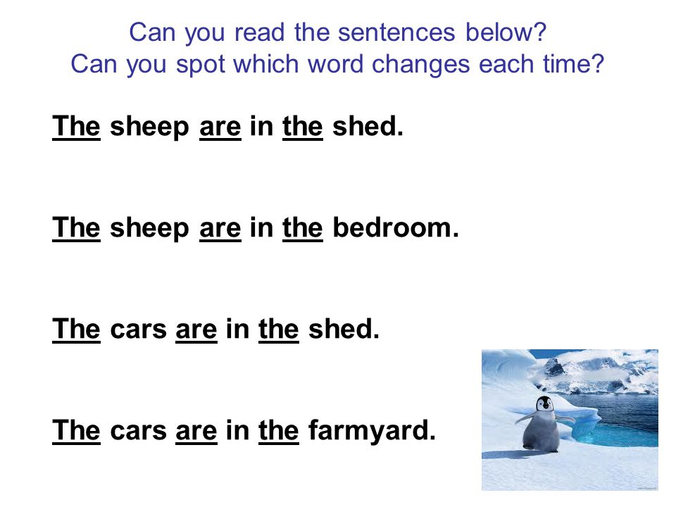 Can you read the sentences below? Can you spot which word changes each time? The sheep are in the shed. The sheep are in the bedroom. The cars are in