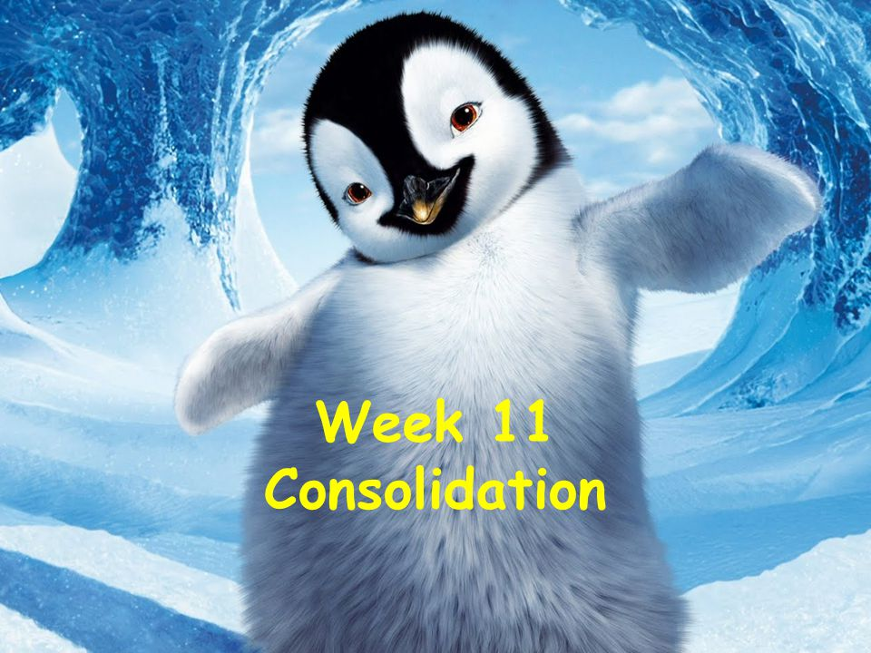 Week 11 Consolidation