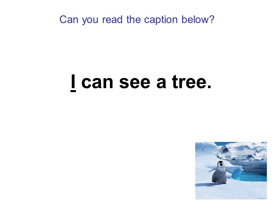 Can you read the caption below I can see a tree.
