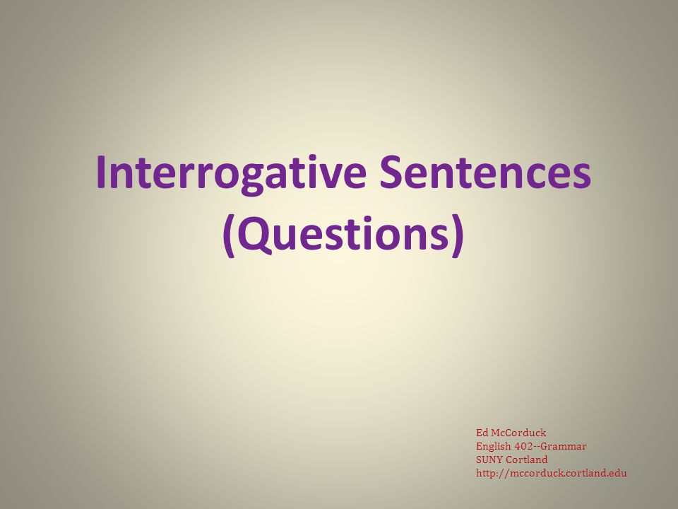 There are two types of interrogative sentences, a.k.a.