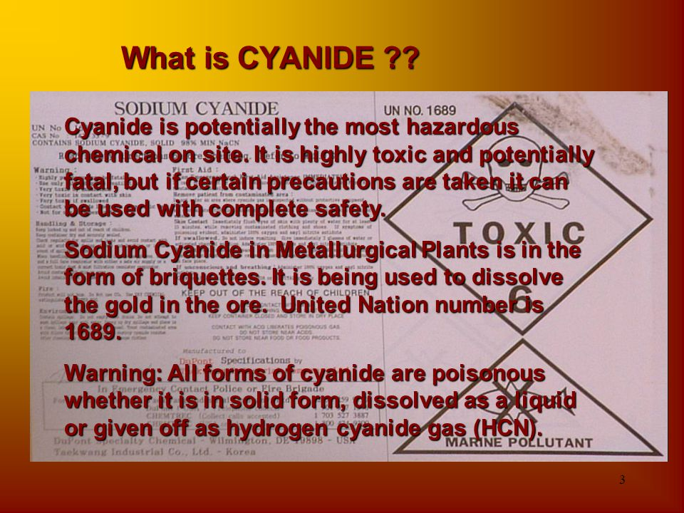 3 What is CYANIDE ?? Cyanide is potentially the most hazardous chemical on site. It is highly toxic and potentially fatal, but if certain precautions