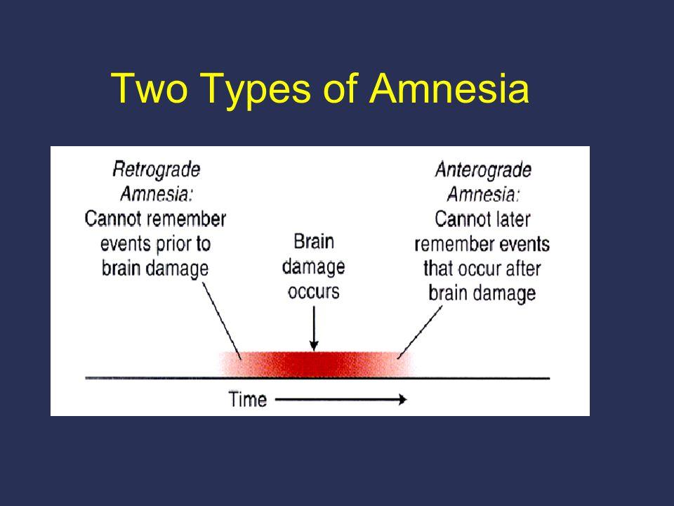 Two Types of Amnesia