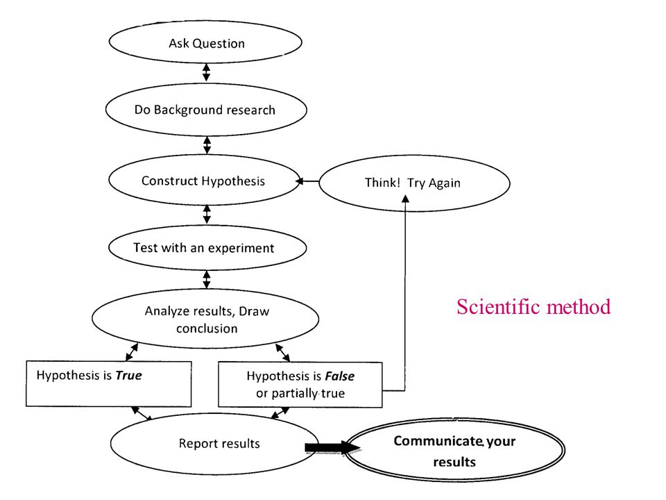 Science Project Topics to AvoidWhy Any topic that boils down to a simple preference or taste comparison.