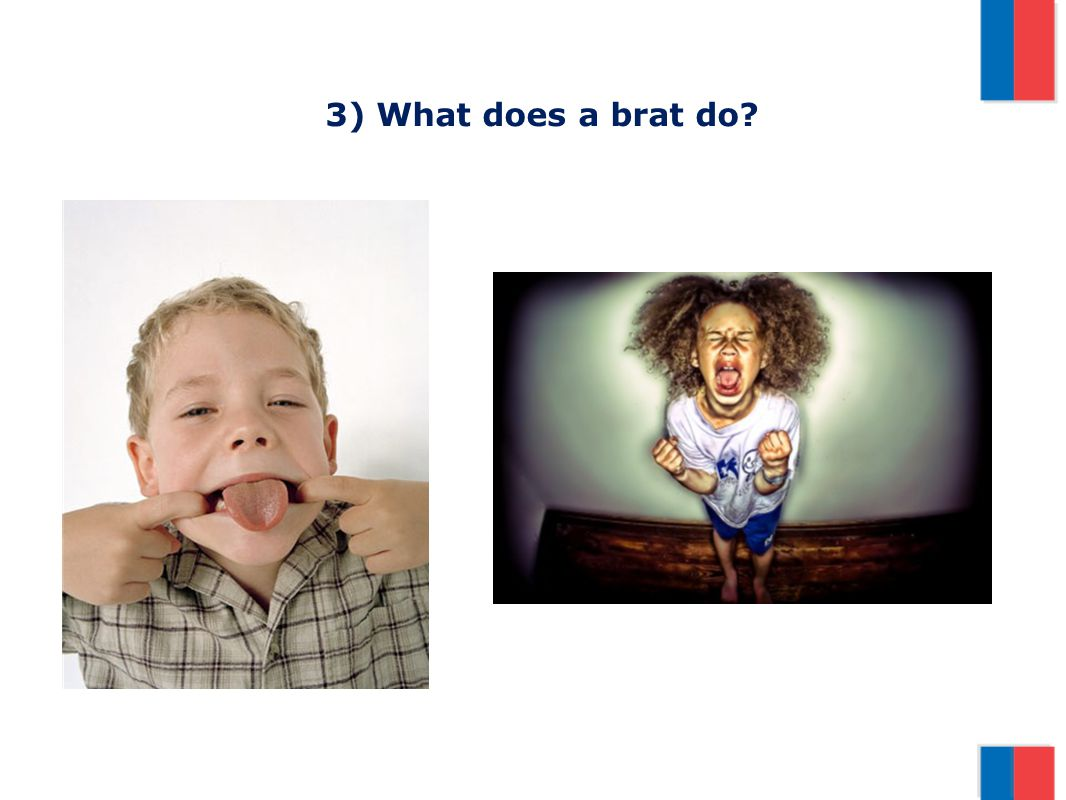 3) What does a brat do?
