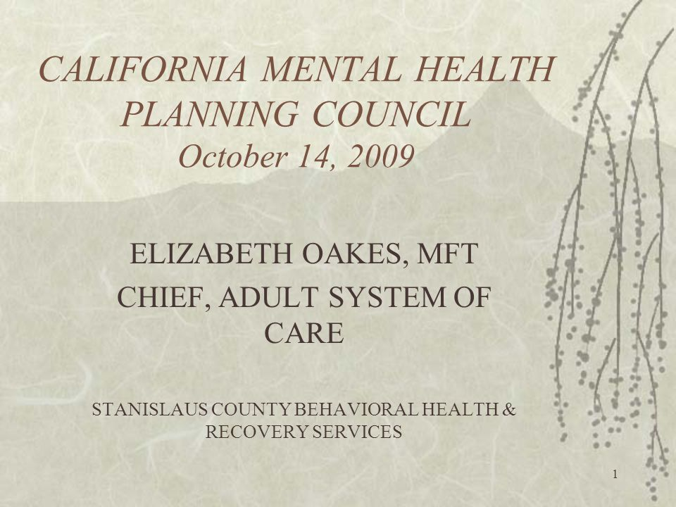 1 CALIFORNIA MENTAL HEALTH PLANNING COUNCIL October 14, 2009 ELIZABETH OAKES, MFT CHIEF, ADULT SYSTEM OF CARE STANISLAUS COUNTY BEHAVIORAL HEALTH & RECOVERY SERVICES