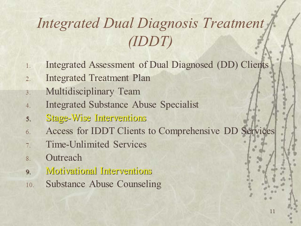11 Integrated Dual Diagnosis Treatment (IDDT) 1. Integrated Assessment of Dual Diagnosed (DD) Clients 2. Integrated Treatment Plan 3. Multidisciplinar