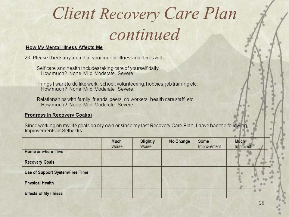 18 Client Recovery Care Plan continued How My Mental Illness Affects Me 23.