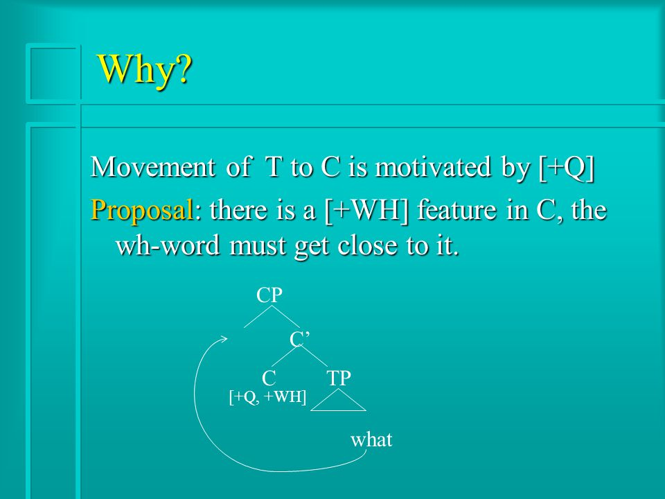Why? Movement of T to C is motivated by [+Q] Proposal: there is a [+WH] feature in C, the wh-word must get close to it. CP C' C TP what [+Q, +WH]