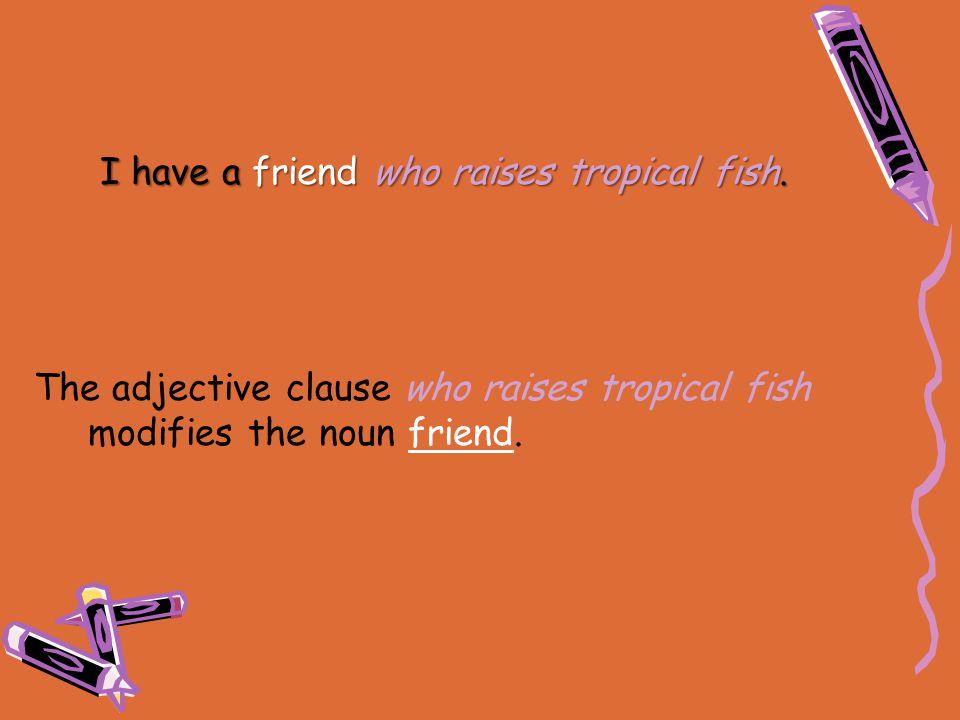 The adjective clause who raises tropical fish modifies the noun friend. I have a friend who raises tropical fish.
