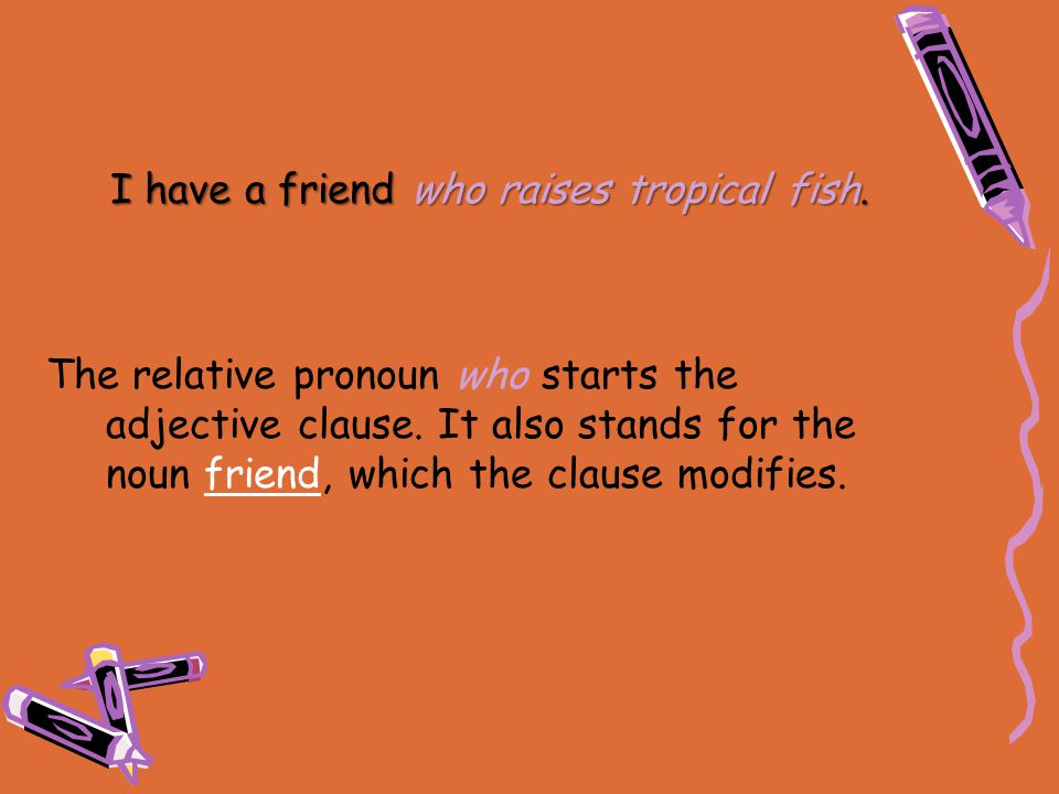 I have a friend who raises tropical fish. The relative pronoun who starts the adjective clause. It also stands for the noun friend, which the clause m