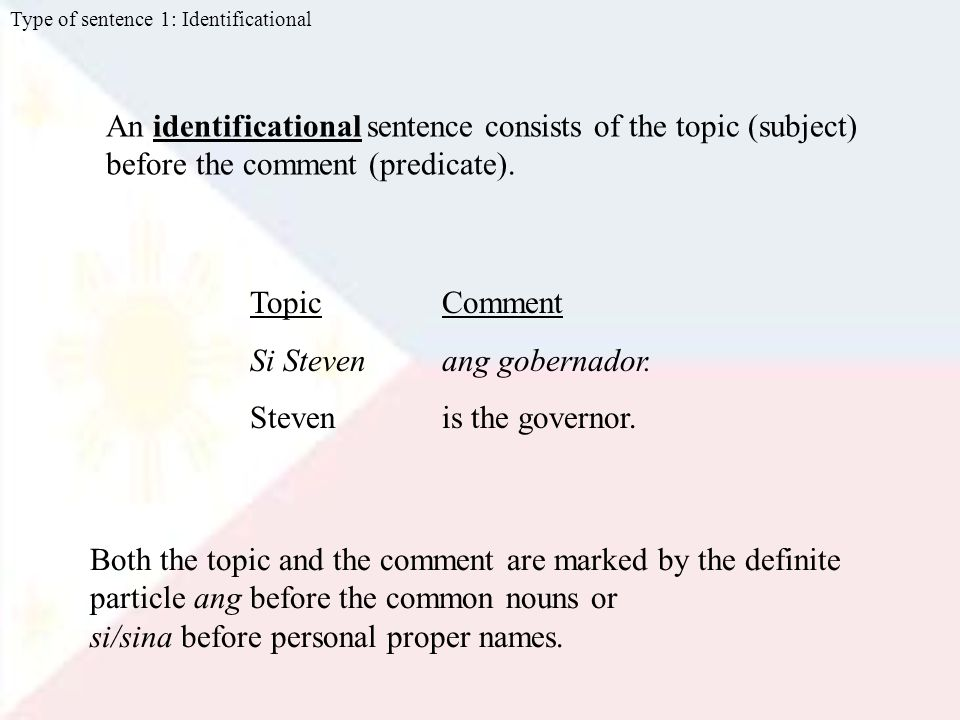 An identificational sentence consists of the topic (subject) before the comment (predicate).