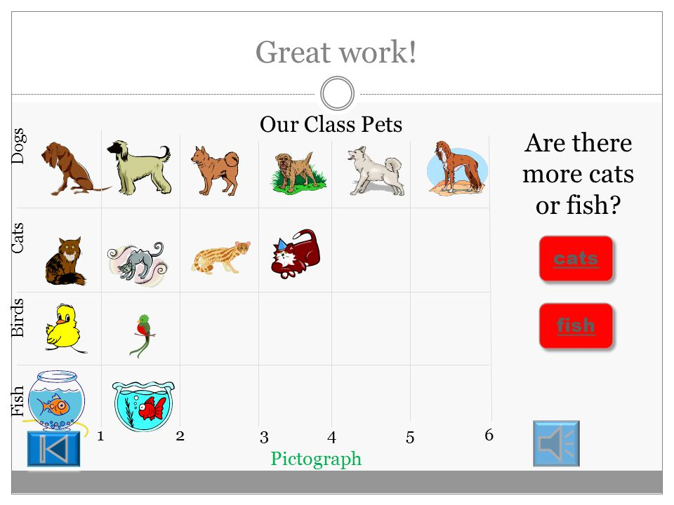 Keep going! Pictograph 123456 Our Class Pets Dogs Cats Birds Fish How many birds are there 3 3 2 2